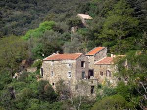 Upper Languedoc Regional Nature Park - Stone houses in the middle of the forest (trees)
