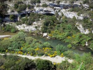 Upper Languedoc Regional Nature Park - Rock faces, shrubs, river and brooms in flowers