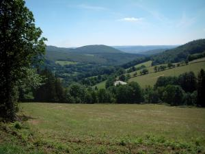 Upper Languedoc Regional Nature Park - Meadow, trees, meadows and forests
