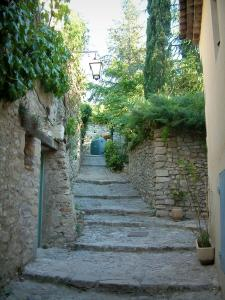Vaison-la-Romaine - Narrow street paved in the medieval town (high city) with a house, stone walls, plants and trees