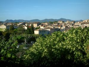 Vaison-la-Romaine - Trees and houses of the city
