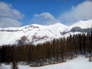 Valberg - Ski area of the resort: snow, trees, mountains and clouds in the blue sky