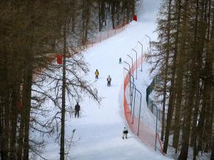 Valberg - Snow, trees and ski trail in the ski resort