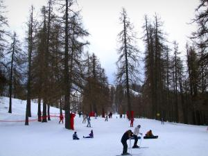 Valberg - Snow, skiers and trees
