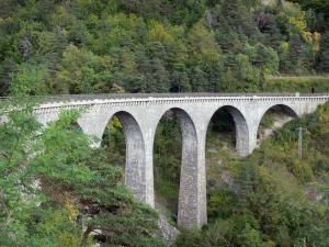 Valbonnais - La Bonne viaduct lined with trees