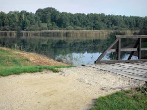 La Vallée lake - Wooden bridge, lake, reeds and trees of Orléans forest (forest massif)