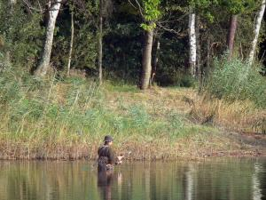La Vallée lake - Lake, fisherman in the water (fishing), reeds, shore and trees
