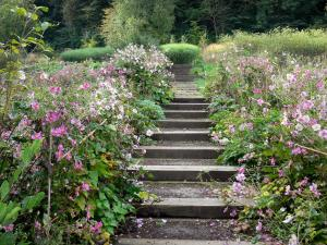 Valloires gardens - Stair lined with flowers