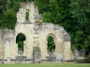 Vauclair abbey - Remains (ruins) of the old Cistercian abbey, trees of the Vauclair forest; in the town of Bouconville-Vauclair