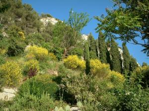 Guide of the Vaucluse Tourism Holidays Weekends