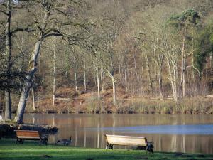 Vaux-de-Cernay abbey - Benches and trees on the edge of the pond, in the Upper Chevreuse Valley Regional Nature Park