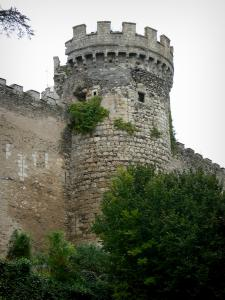 Veauce - Tower of the castle