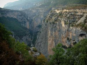 Verdon gorges - From the sublime corniche (scenic coastal road), view of vegetation, trees, scrubland and limestone cliffs (rock faces) of the canyon (Verdon Regional Nature Park)