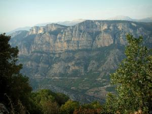 Verdon gorges - From the sublime corniche (scenic coastal road), view of the calcareous trees and the cliffs (rock faces) of the canyon (Verdon Regional Nature Park)