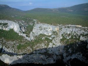 Verdon gorges - Calcareous cliff (rock faces), trees and scrubland (Verdon Regional Nature Park)