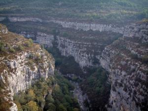 Verdon gorges - Calcareous cliff (rock faces), scrubland and trees (Verdon Regional Nature Park)