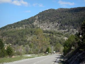 Verdon Regional Nature Park - Napoleon road and hill dotted with trees