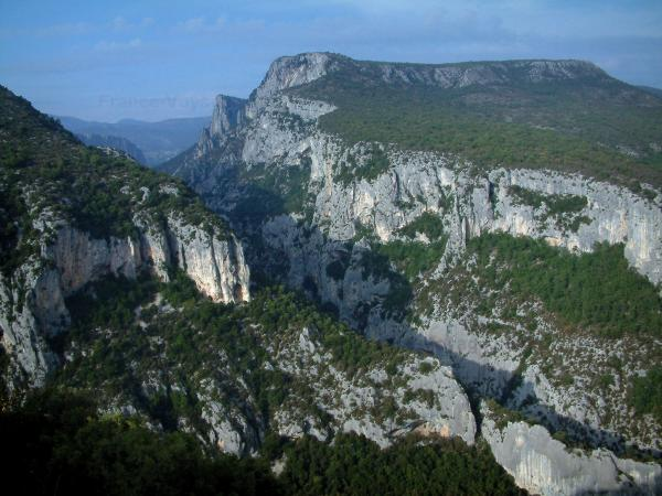 Verdon Regional Nature Park - Trees, scrublands and limestone cliffs (rock faces) of the Verdon gorges