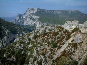 Verdon Regional Nature Park - Scrubland and rock faces (limestone cliffs)