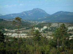 Verdon Regional Nature Park - Vegetation, trees, hills covered with forests and a small mountain