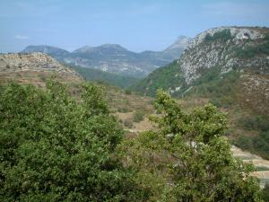 Verdon Regional Nature Park - Trees in foreground, scrubland, forests and small mountains