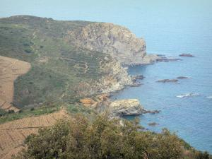 Vermilion coast - View of the rocky coast and the Mediterranean sea