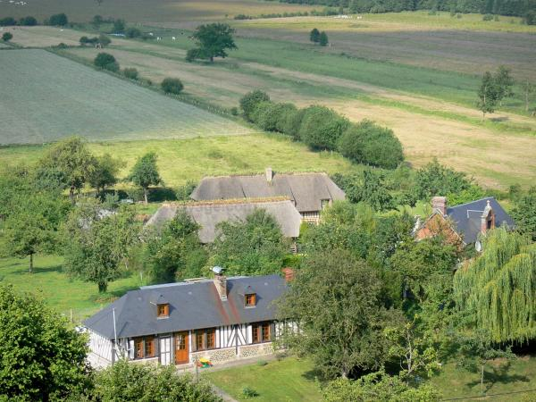 Vernier marsh - Houses, thatched cottages, trees and fields; in the Norman Seine River Meanders Regional Nature Park
