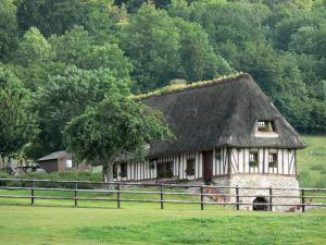 Vernier marsh - Half-timbered house with a thatched roof (cottage) surrounded by greenery; in the Norman Seine River Meanders Regional Nature Park