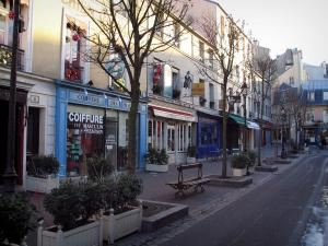 Versailles - Houses, shops, restaurants, trees and street in the royal city