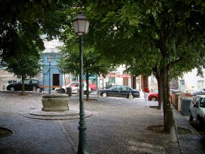 Vesoul - Square shaded with a well and trees