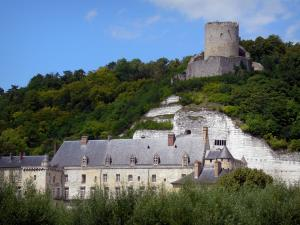 Vexin Français Regional Nature Park - Keep and La Roche-Guyon castle  surrounded by trees