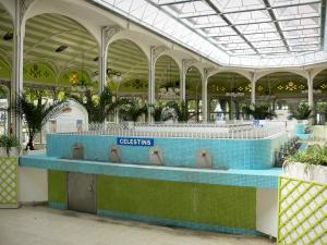 Vichy - Spa town (resort): Sources hall: fountain of the Célestins spring