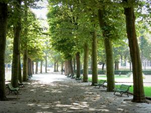 Vichy - Park of the Springs: path lined with trees and benches