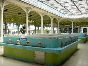 Vichy - Station thermale (ville thermale) : Hall des Sources : buvette de la source Chomel