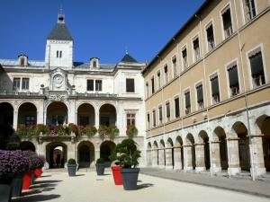 Vienne - Facade of the Town Hall and shrubs in pots