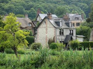 Vieux-Port - Houses of the village surrounded by greenery; in the Norman Seine River Meanders Regional Nature Park