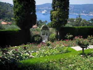 Villa Ephrussi de Rothschild - Rose garden (rosebushes) with view of the natural harbour of Villefranche-sur-Mer