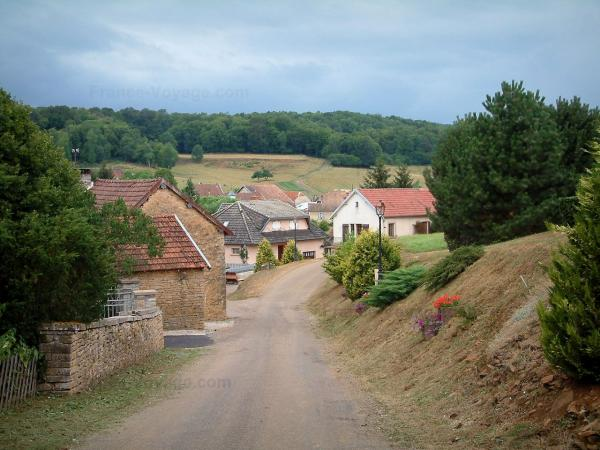 Villages of the Haute-Saône - Road lined with houses and forest in background