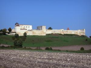 Villebois-Lavalette - Castle and its surrounding wall flanked by towers overhanging meadows and fields
