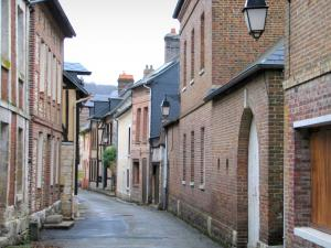 Villequier - Narrow street of the village lined with brick-built houses, in the Norman Seine River Meanders Regional Nature Park