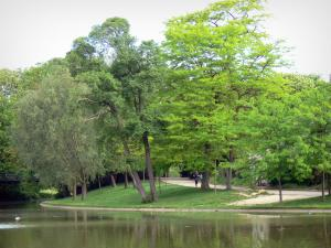 Vincennes wood - Daumesnil lake surrounded by trees