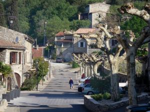 Vogüé - Street lined with plane trees and stone houses