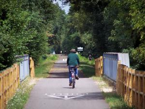 Voie Verte (Green Lane) - Cyclists (cycling) on a cycle path of the Voie Verte (Green Lane,  former railroad), trees