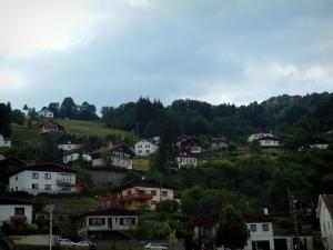 Vosges massif - Houses, chalets and trees in a mountain village (Ballons des Vosges Regional Nature Park)