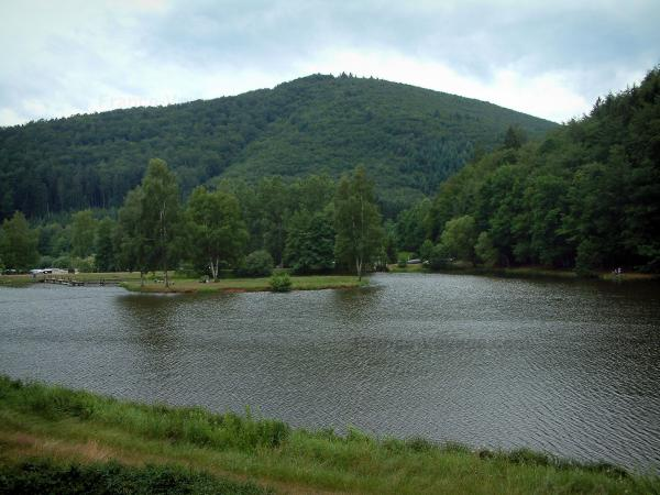 Vosges (Northern) - Shore, lake, trees and hill with forest (Northern Vosges Regional Nature Park)