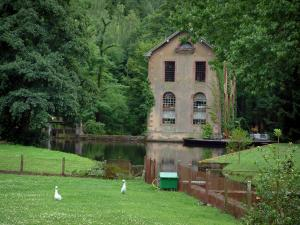 Vosges (Northern) - House on the edge of a pond and trees (Northern Vosges Regional Nature Park)