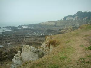 Wild coast (côte sauvage) - Grassland, cliffs, houses, cliffs and the sea (Atlantic Ocean)