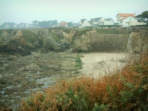 Wild coast (côte sauvage) - Vegetation in foreground, sand, cliffs and houses