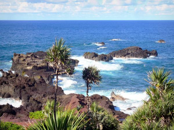 Wild South - Rocky coast, overlooking the Indian Ocean, vacoas foreground