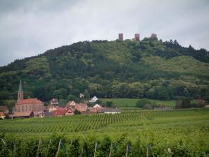 Wine Trail - Vineyards, Alsatian village and keeps of Eguisheim (road of the five castles) perched on a small hill